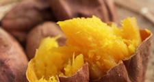 厳選の芋使用・鹿児島の最高に美味しいプリンと溶岩の器